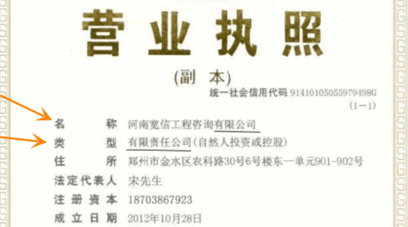 real china company business license
